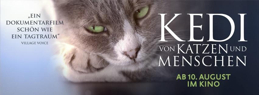 Kinoplakat: Kedi - Von Katzen und Menschen