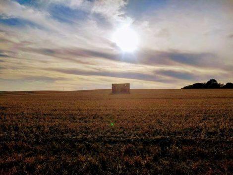 Trockenes Feld in Schleswig-Holstein